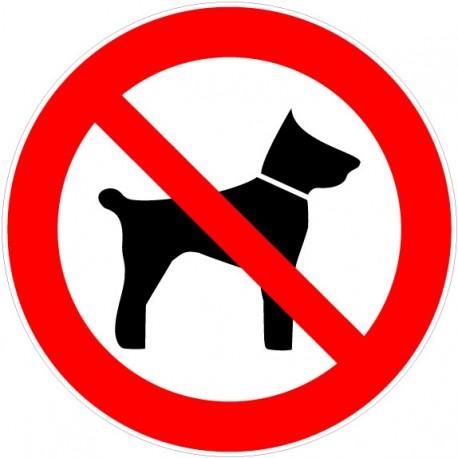 Panneau interdit d'amener des animaux